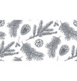 seamless pattern with pine cones and branches vector image vector image