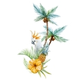 Watercolor tropical palm vector image vector image