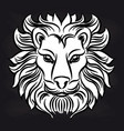white lion head on blackboard vector image vector image