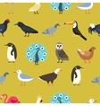 Vintage summer birds background vector image