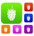 blackberry fruit set color collection vector image vector image