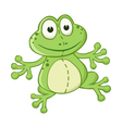 cartoon frog vector image vector image