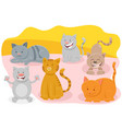 cute cats or kittens animal characters vector image
