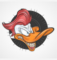 duck red hair vector image