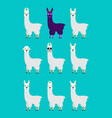 lama alpaca set emotion avatar sad and angry face vector image