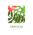 tropical logo design square geometric badge with vector image vector image