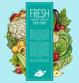 natural vegetables and organic fruits banner vector image