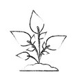 blurred silhouette image cartoon plant with leaves vector image