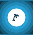 isolated dolphin icon flat playful fish vector image vector image