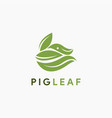leaf and pig logo icon template vector image vector image