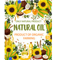 natural oil and plants cooking and seasoning vector image