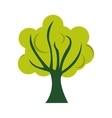 tree green flat icon vector image vector image