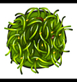 A topview of a vegetable sushi vector image vector image