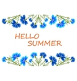 Banner Hello Summer vector image vector image