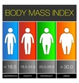 Body Mass Index Infographic Icons vector image vector image