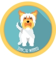 dog Junior winner medal icon flat design vector image vector image