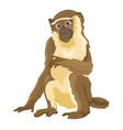 sitting monkey isolated vector image