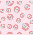 alpaca or lama seamless pattern vector image