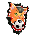 cat and football vector image