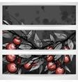 Cherries With Leaves vector image