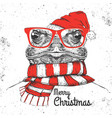 christmas hipster fashion animal frog vector image vector image