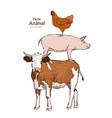farm animals isolated vintage set vector image