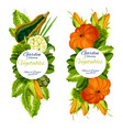 garden vegetables icons farm harvest vector image vector image