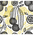 hand drawn brazilian branch and kernels vector image vector image