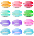 Set of sweets biscuits macaroon vector image