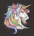 unicorn full color rainbow vector image