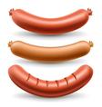 Sausage set vector image