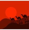 Camel caravan in desert cartoon vector image