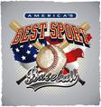 baseball americas sport vector image vector image
