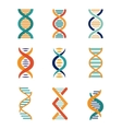 DNA genetics icons vector image