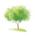 green tree vector image vector image