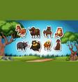 set of wild animal sticker vector image vector image
