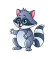 cartoon raccoon isolated vector image