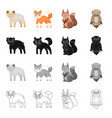 animals wild domestic and other web icon in vector image