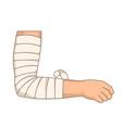 bandage elbow injury arm bandaging elastic tape vector image vector image