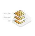 different mobile sim card size standard micro vector image vector image