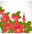 Floral background with wild rose brier vector image