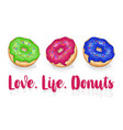 love life donuts vector image