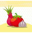 vegetables fresh organic healthy onion tomato vector image vector image