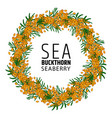 wreath of autumn berries and leaves of sea vector image