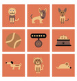assembly flat icons pets and accessories vector image vector image