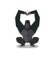 gorilla pose hands in shape heart vector image vector image