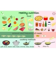 infographic food healthy nutrition vector image