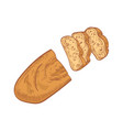 loaf bread cut into slices isolated on white vector image