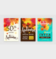 colorful autumn poster set fall sale background vector image