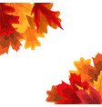 autumn natural leaves background eps10 vector image vector image